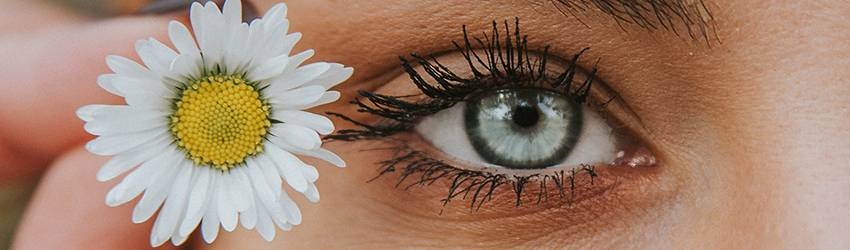 A blonde Gemini woman holds a daisy flower next to her eye. The image is a close up of her left eye which is blue.