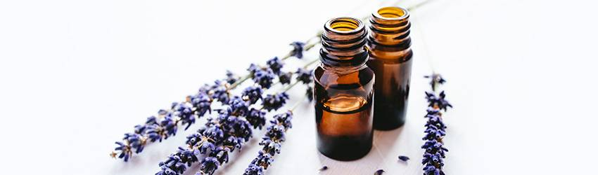 Essential oils in brown bottles with lavender next to it.