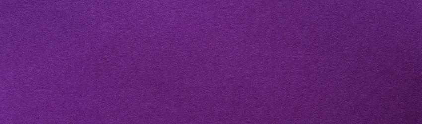 the-color-violet