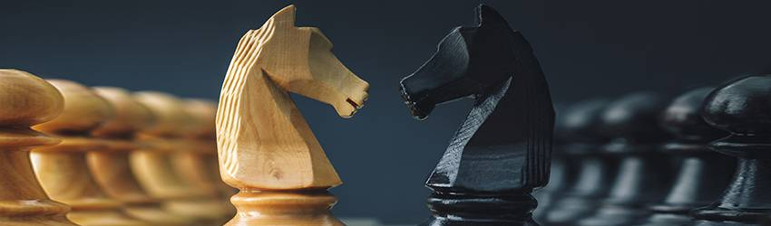 A chess board is shown. Two knights (from opposing teams, white and black) face each other.