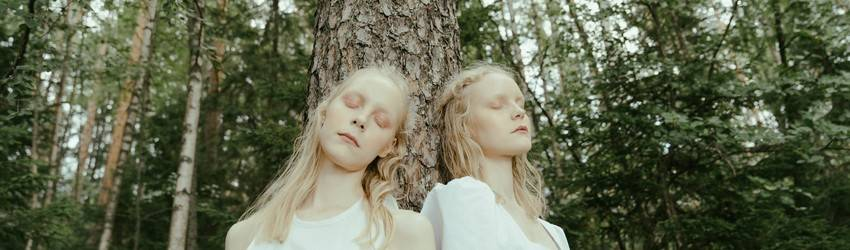 twins-in-a-forest