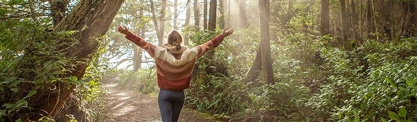 A person walking through the forest with their arms spread out wide.