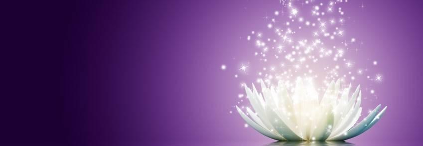 A lotis flower.