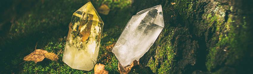 Two crystal points sit on moss next to a tree. One is yellow the other is a clear quartz crystal.