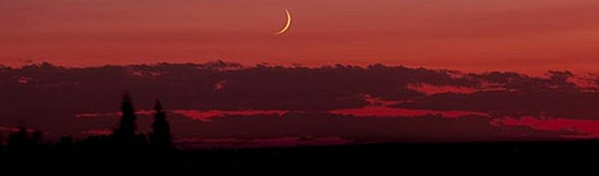 Intensity rises with this New Moon in Scorpio. Where are you feeling the most….wicked?