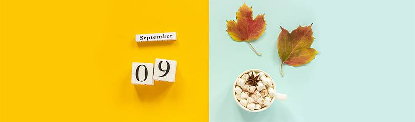 Calendar blocks that represent September 9th, the 9th month and the 9th day. The number 9 is demonstrated.