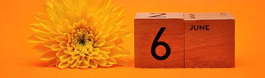 Calendar blocks read June 6th with an orange flower next to it.