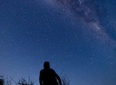 Weekly Astrology Forecast: February 8 - 14, 2021