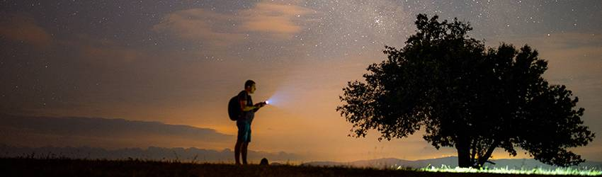 A person with a flashlight stands in front of a desert scene with an orange and purple starry sky in the background.